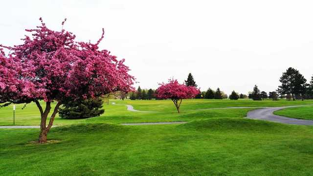 A spring day view of a hole at Ironwood Golf Course