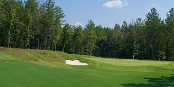 View of the 10th green at Magnolia Green Golf Club