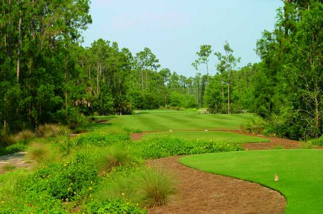 Black's course no. 2 provides the most demanding tee shot on the golf course, but also one of the most scenic. Once through the narrow chute of pines, the fairway opens up to an undulating green.