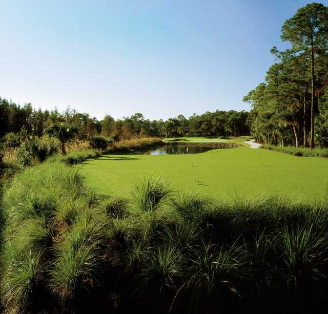A view of a tee at Old Marsh Golf Club