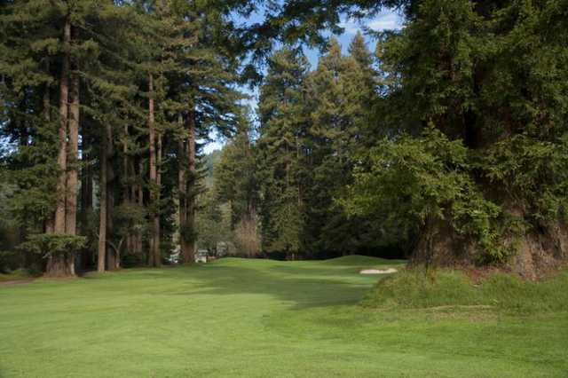 A view from a fairway at Northwood Golf Club
