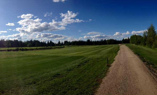 A view of a fairway at Edson Golf and Country Club
