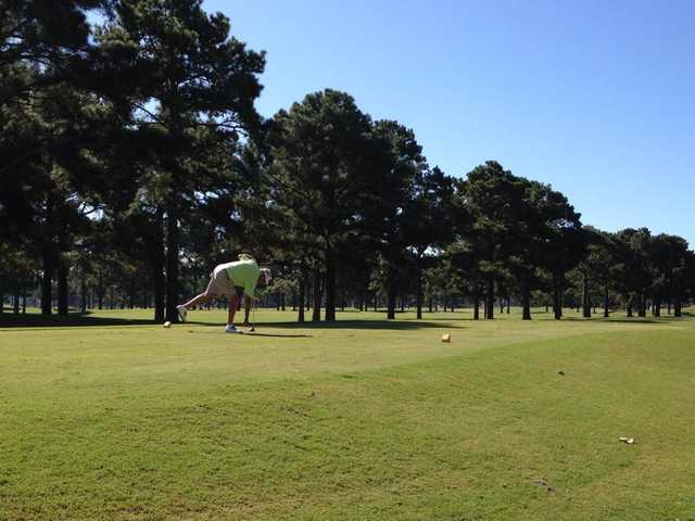 A view of a tee at Myrtlewood Golf Club