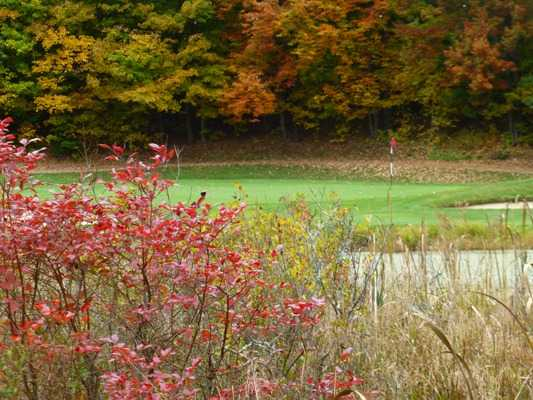 A view of green #15 protected by a pond at Wahconah Country Club