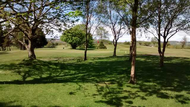 View of a green at Lochgelly Golf Club