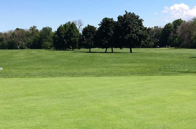 A sunny day view from Columbus Park Golf Course