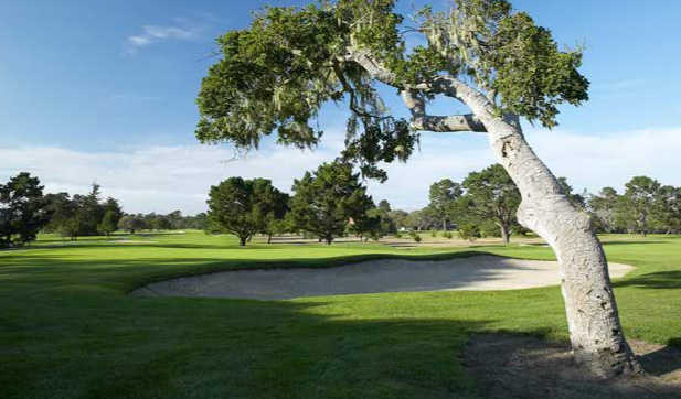 A view of a green protected by a bunker at Del Monte Golf Course