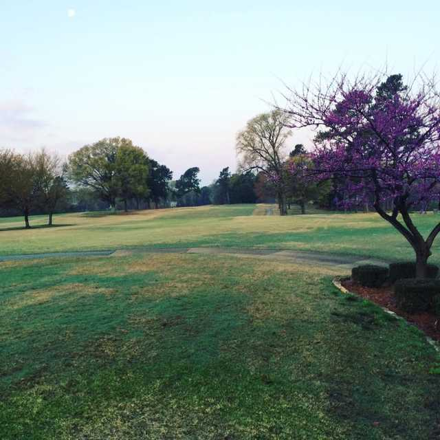 A morning day view of a hole at Jackson Country Club