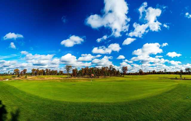 View of a green from the Loop at Forest Dunes Golf Club