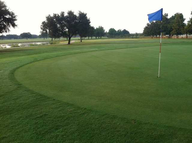 A view of a green at Bayou Oaks City Park North Course