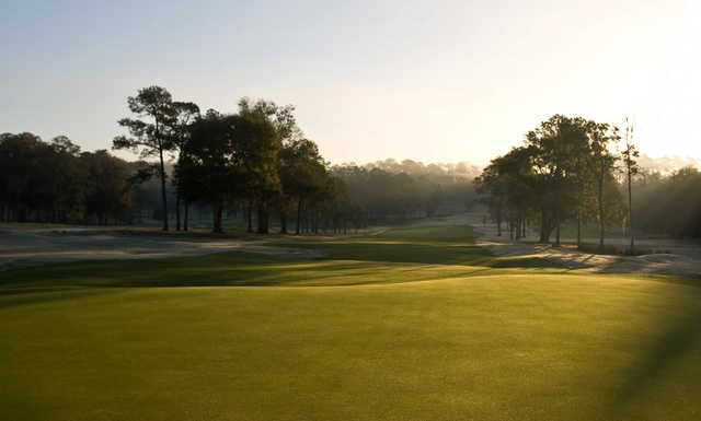 A view from a green at Mark Bostick Golf Course from The University of Florida.