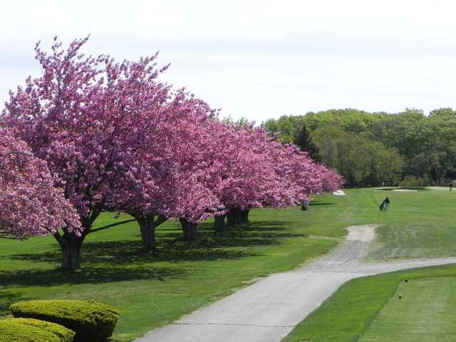 First hole w cherry trees in bloom at Green Valley Country Club
