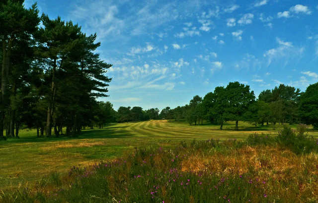 A view of a fairway at Crowborough Beacon Golf Club