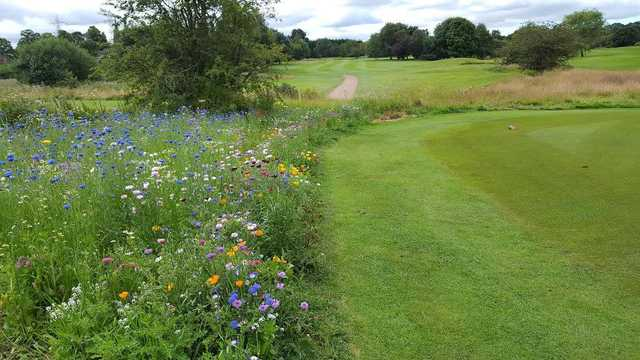 A view from a tee at Great Barr Golf Club