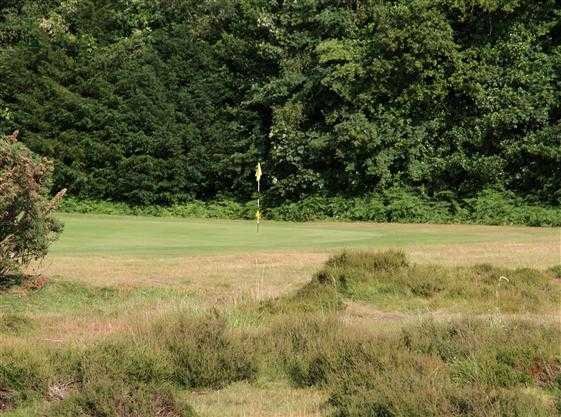A view of the 3rd green at Limpsfield Chart Golf Club