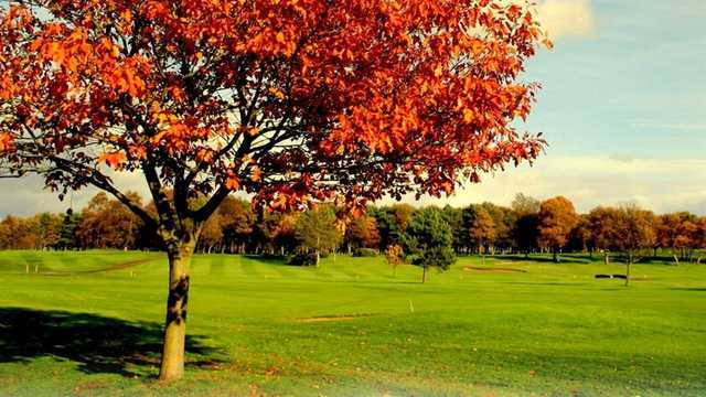 A fall day view from Ponteland Golf Club