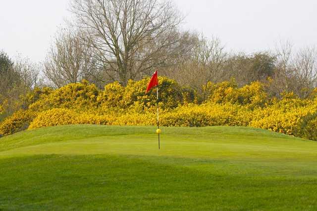 A view of a green at Tadmarton Heath Golf Club.