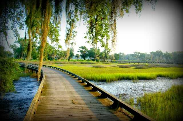 A view from Sapelo Hammock Golf Club