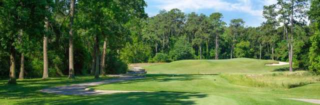 A view from The Golf Trails of The Woodlands