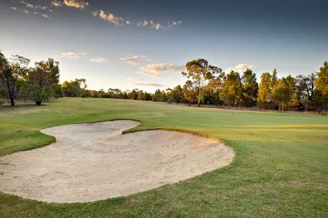 A view of a hole protected by a bunker at Barossa Valley Golf Club Nuriootpa