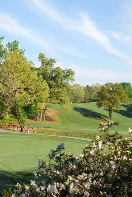 View of the 2nd hole from the Chateau Course at Chateau Elan Golf Club