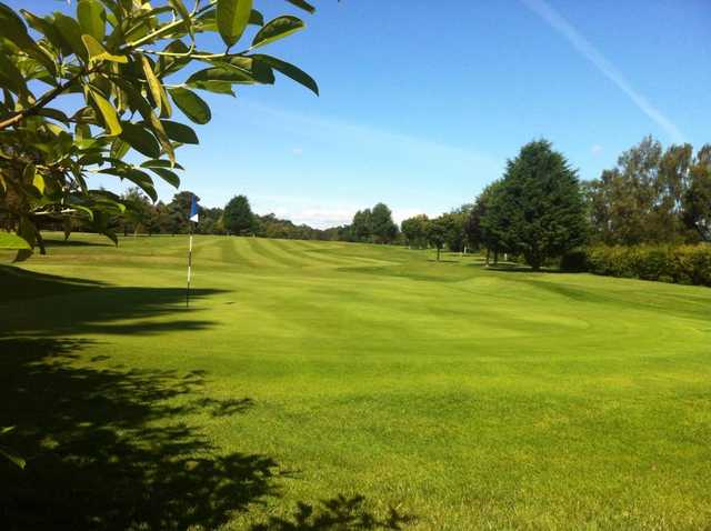 View of a green at The Hirsel Golf Club