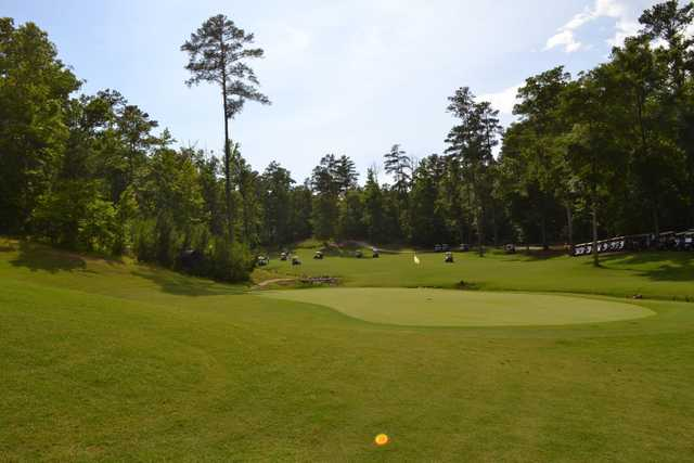 A perfect sunny day view of a green at Champions Retreat Golf Club
