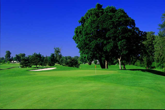 A view of a green with a bunker on the right at Trysting Tree Golf Club.