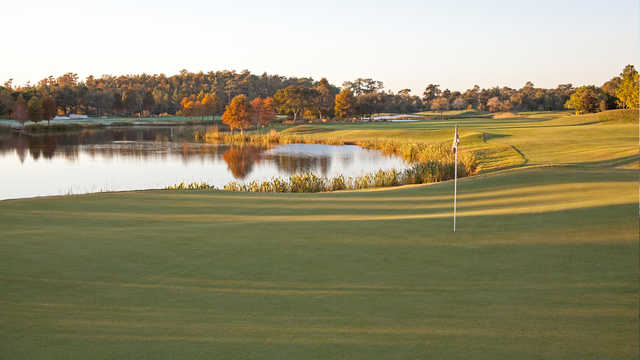A view from Shingle Creek Golf Club