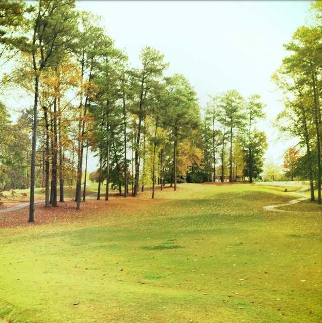 A view with narrow path in background from Fox Creek Golf Club