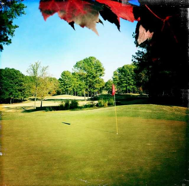 A view of green at Fox Creek Golf Club