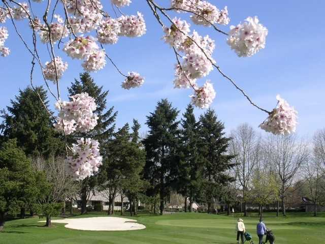 A spring view from Green/Red at Charbonneau Golf Club
