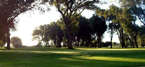A view from Cattails Golf Club