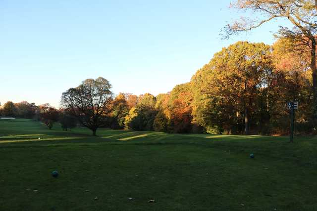 A view from tee #1 at Forest Park Golf Course (Project Woodhaven)