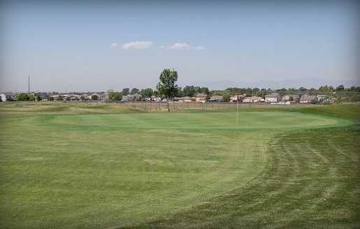 A view of green #16 at Coyote Creek Golf Course