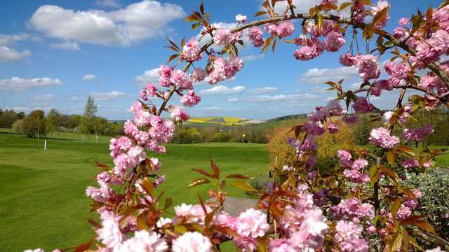 A spring day view of a hole at Marlborough Golf Club