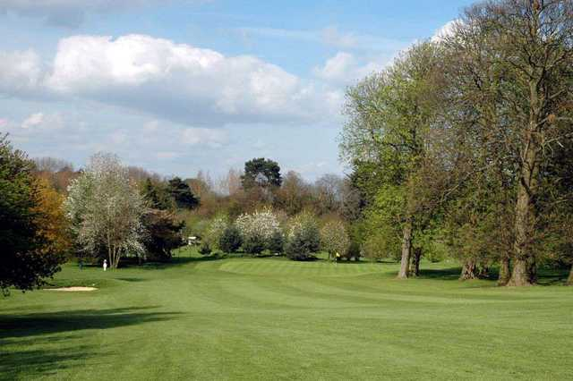 Tree lined approach at Aldenham Golf Club
