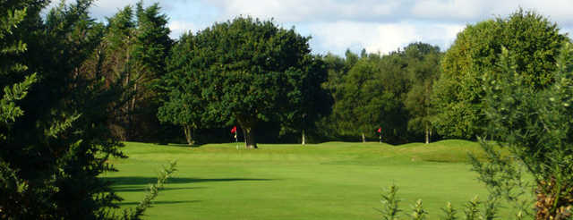 View from #11 at Eastham Lodge
