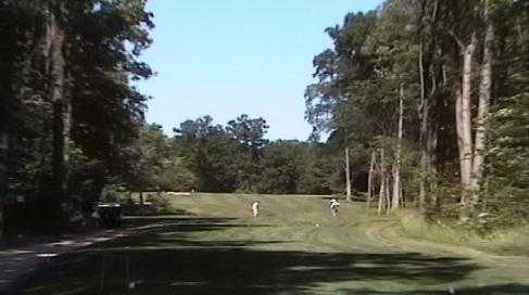 A sunny day view from Raccoon Lake Golf Course