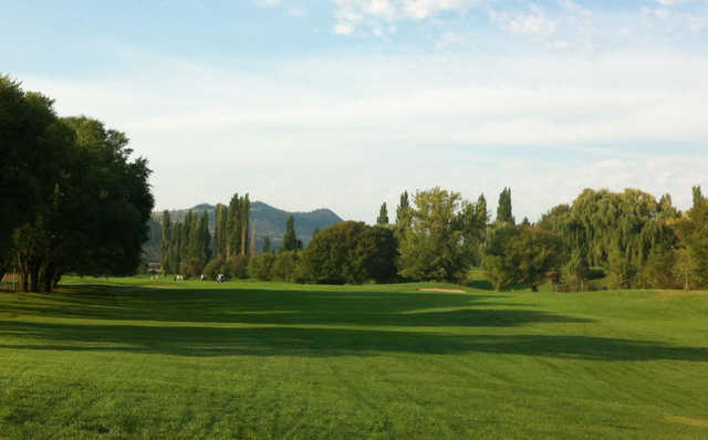 A view from a fairway at Spallumcheen Golf and Country Club
