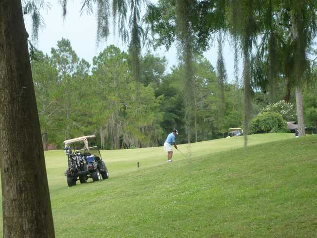 A view from Turkey Creek Golf Course.