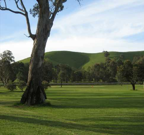 View from Alexandra Golf Club