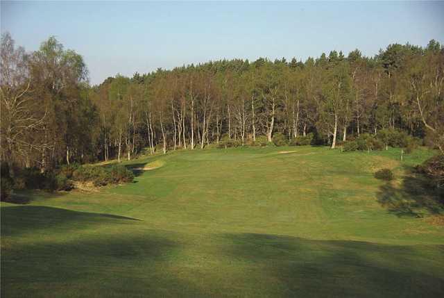 6th green, Boat of Garten Golf Club