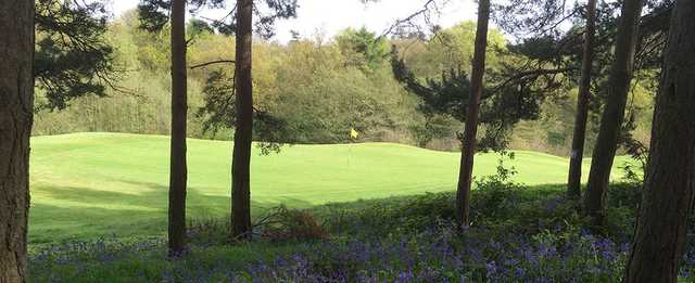 View of a green at Atherstone Golf Club