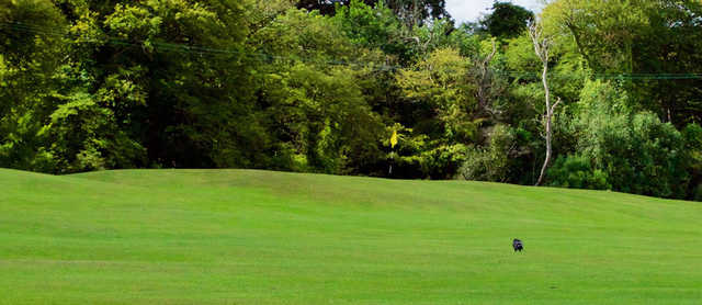 A view of a hole at Pitch & Putt Course from Deer Park Golf and FootGolf