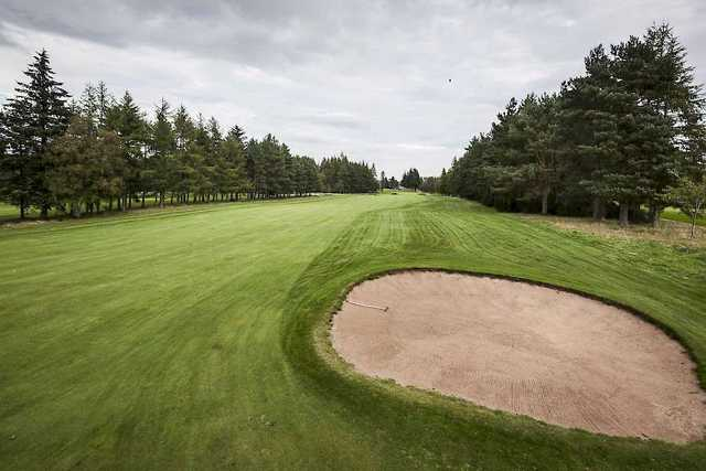 Alyth Golf Course's tree-lined 16th fairway