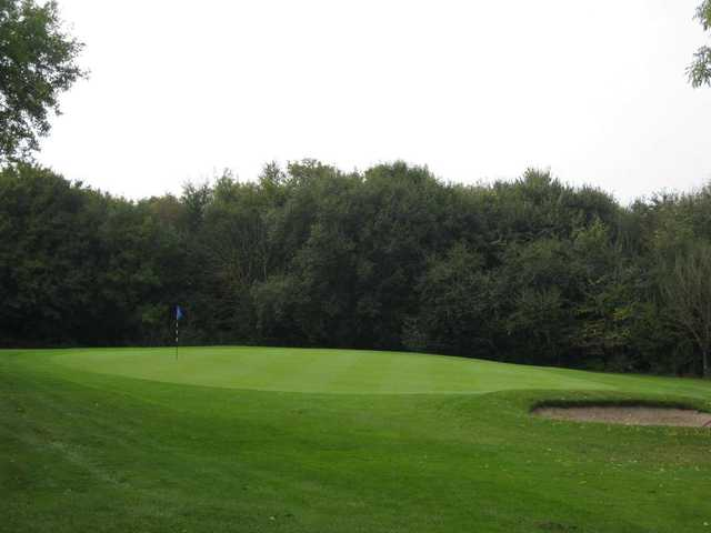 The approach shot to the 8th green at Gaudet Luce Golf Club