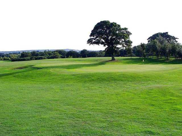 Greenside view of the 7th hole at Crow Nest Park GC