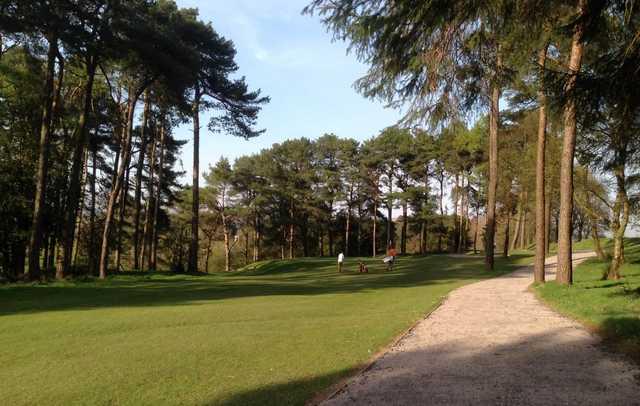 Douglas Park Golf Club 3rd green