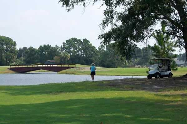 A view from the South Course at Pelican Bay Club with a bridge in background